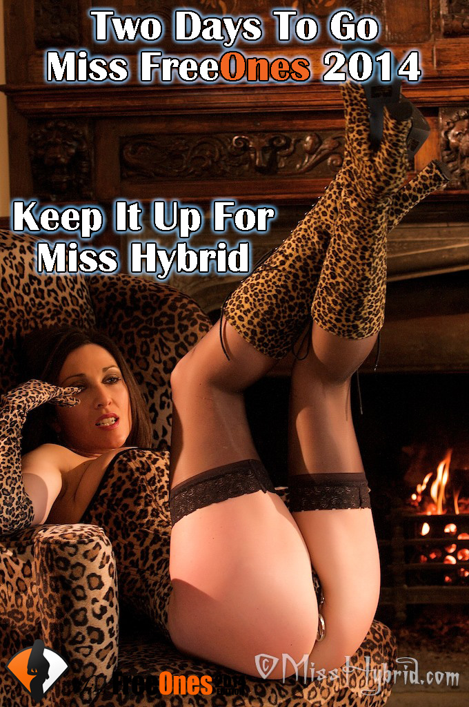 Only Two Days To Go Miss FreeOnes 2014, Miss Hybrid, misshybrid, vote Miss Hybrid