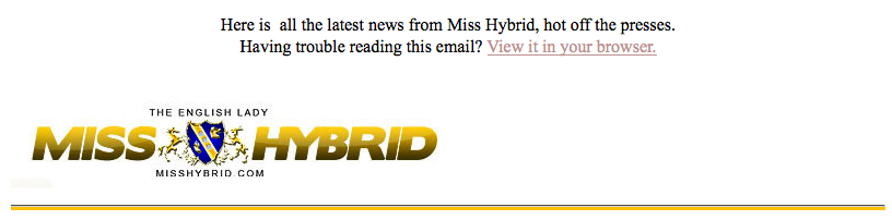 Miss Hybrid free newsletter