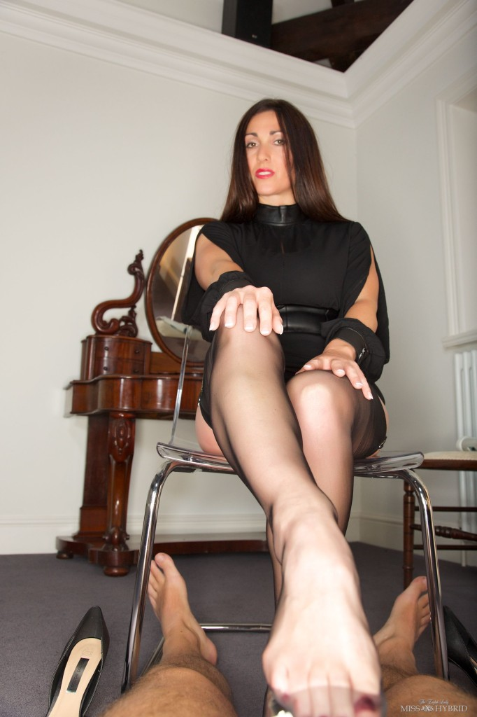 What here hybrid pantyhose pics final