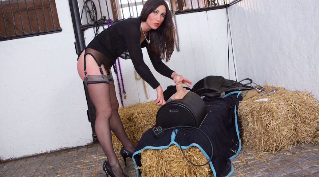 work discipline, Miss Hybrid, sybian, stables, stockings, stilettos, legs