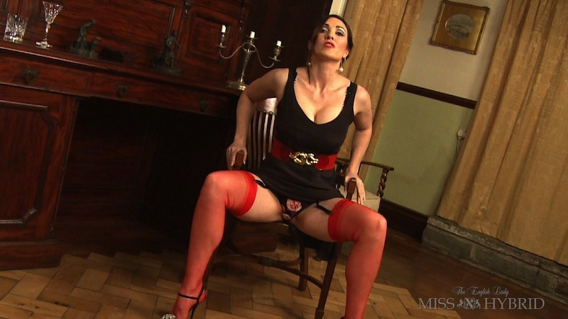 would you dare to come, Miss Hybrid, nylons, pee
